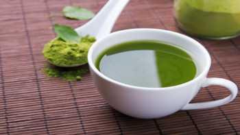 EGCG in Matcha Green Tea -- cup of matcha tea
