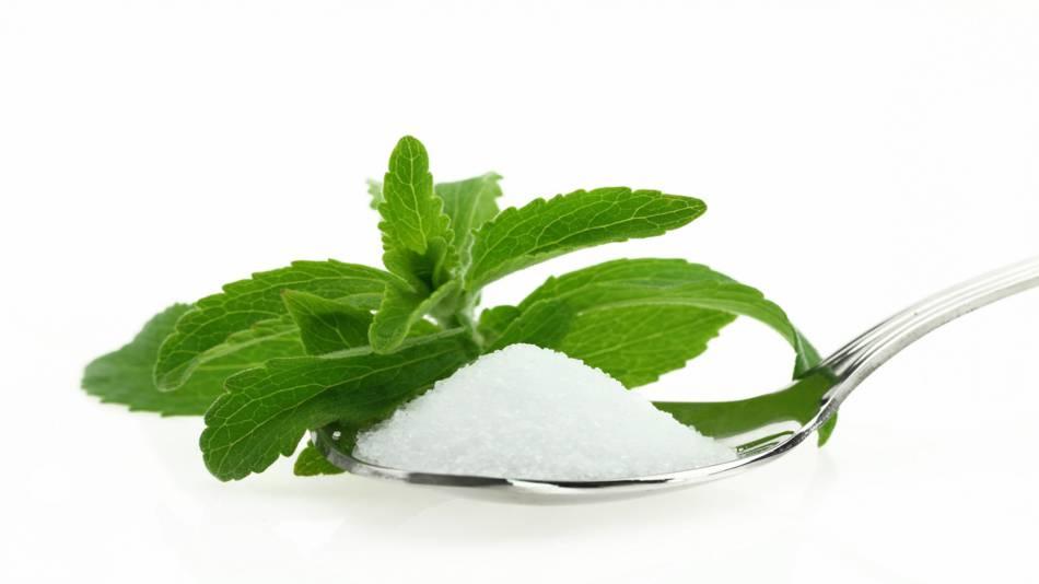 Stevia Health Benefits & Safety -- stevia leaf spoonful of stevia