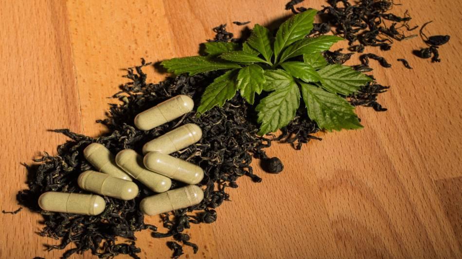 Jiaogulan (Gynostemma pentaphyllum) -- Gynostemma herb and capsules