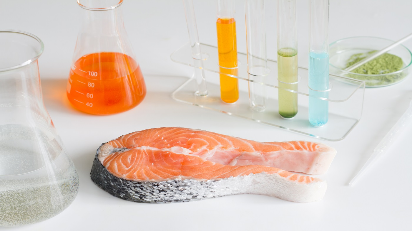 salmon filet with test tubes and beakers for mercury testing