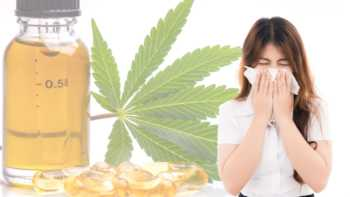 Product Review - Does CBD help fight colds or the flu?