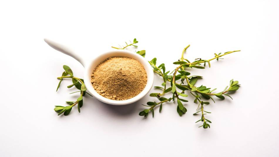 Bacopa for Memory and Cognition -- Bacopa leaves and powder