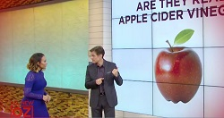 "The Dr. Oz Show segment ""Is Your Apple Cider Vinegar Real?"" featured ConsumerLab.com's recent tests of popular apple cider vinegar bottled liquids and pills."