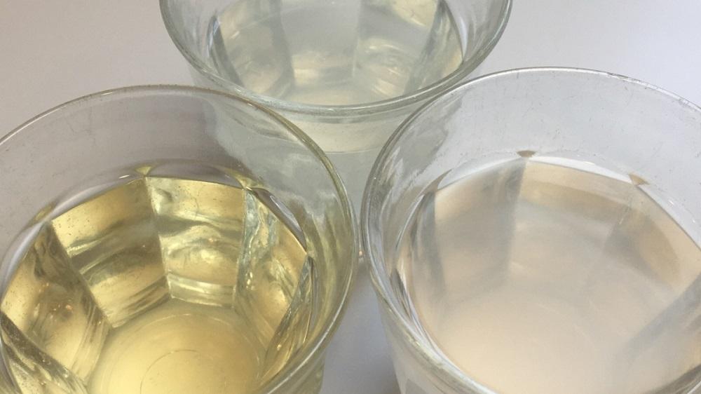 Best Coconut Water? ConsumerLab Tests Popular Products, Reveals <em>Top Pick</em>