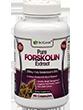 BioGanix Pure Forskolin Extract