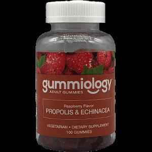 7401_large_Gummiology-Echinacea-2021.png